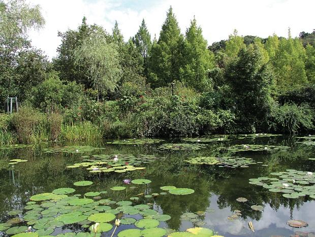 Kitagawa's Marmotten garden, Japanese garden