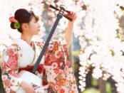 aomori NHK WORLD JAAPN shamisen 01