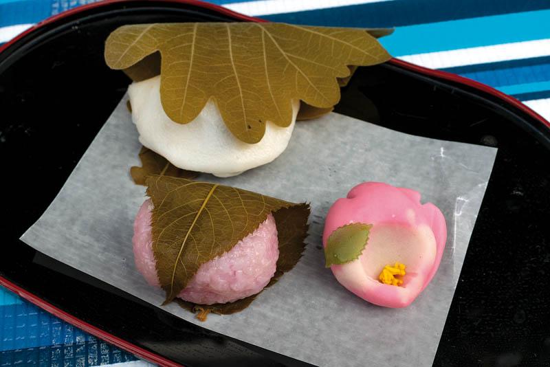 Wagashi-Tokyo-japanese traditional-sweet